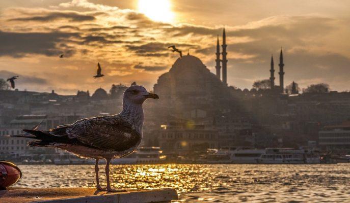 """Blueground/Korkmaz: """"İstanbul, 2030 Yılına Kadar Altın Dönemlerini Yaşayacak"""""""