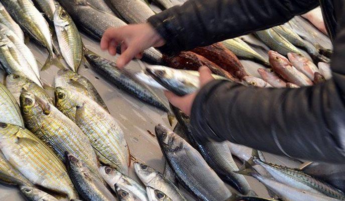 """Çanakkale Su Ürünleri/Özkurnaz: """"Artan Balık Fiyatlarının Düşmesi Kurallara Uymaya Bağlı"""""""