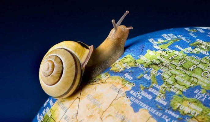 """2020 Küresel Ekonomi için """"Slowbalisation"""" Yılı Olacak"""
