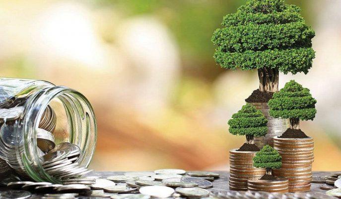 Emeklilik Fonlarından 2019'da Ortalama %26,3 Oranında Getiri Sağlandı