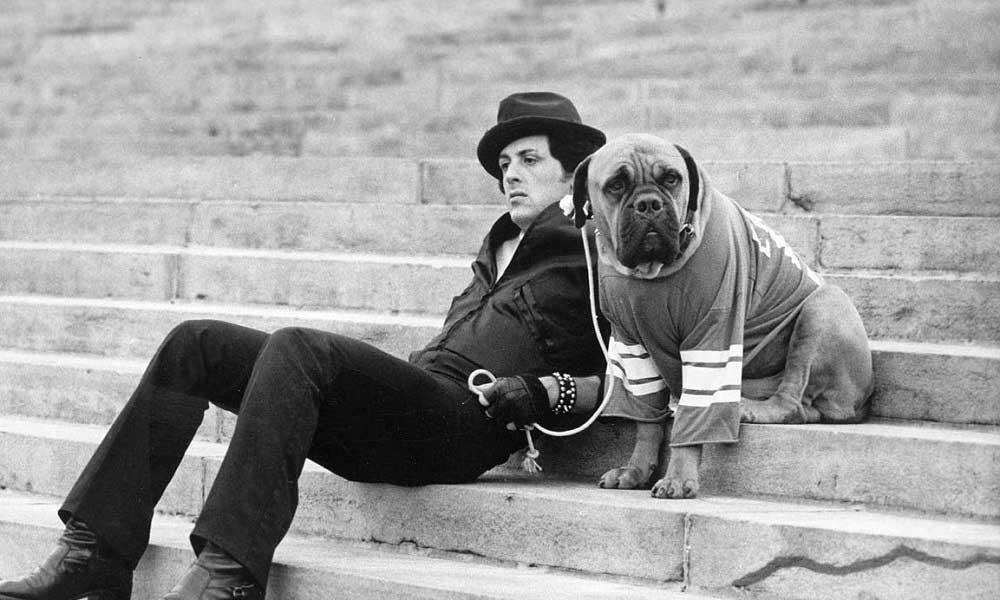 Parasızlıktan Köpeğini Satan Sylvester Stallone