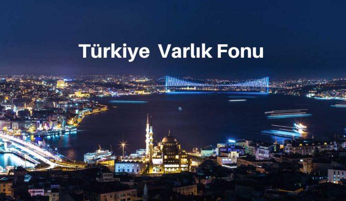 Varlık Fonu Nedir? Türkiye Varlık Fonu Hakkında Bilgiler