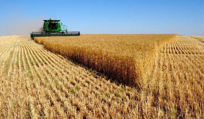 Yurt İçi Üretici Fiyat Endeksi Aralık'ta %0,69 Artış Gösterdi