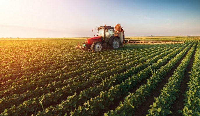 2020 Bütçesinden Tarıma 4 Milyar 730 Milyon Lira Ayrıldı
