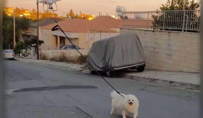 Kıbrıs'ta Bir Kişi Karantina Nedeniyle Drone ile Köpeğini Gezdirdi
