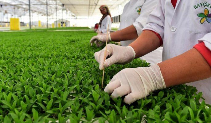 Yurt İçi Üretici Fiyat Endeksi Şubat'ta Aylık %0,48 Artış Gösterdi