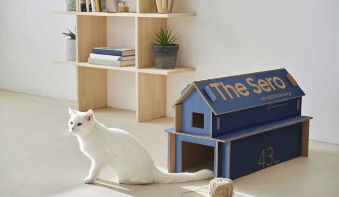 Samsung Televizyon Kutuları Kedi Evi Olarak Değerlendirilecek
