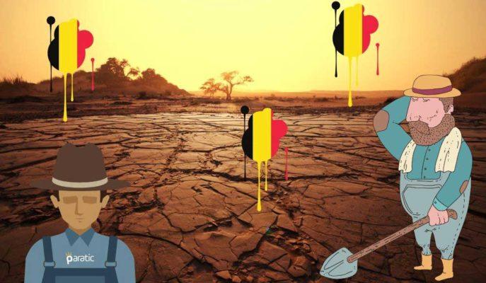 Belçikalı Tarım Üreticilerini Pandeminin Yanında Bir de Kuraklık Vurdu