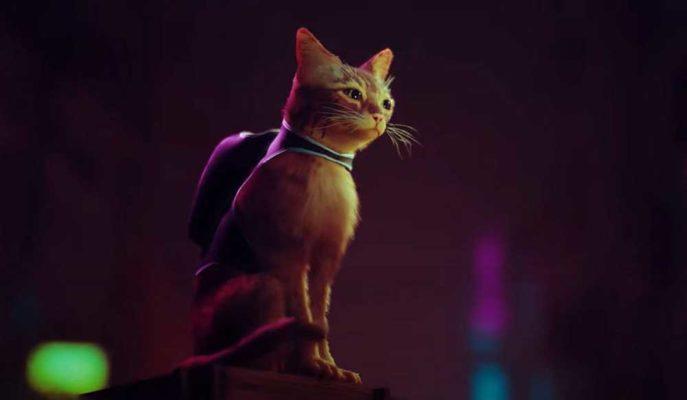 Robotların Hakim Olduğu Dünyada Bir Kedinin Macerasını Konu Alan Oyun Stray Duyuruldu