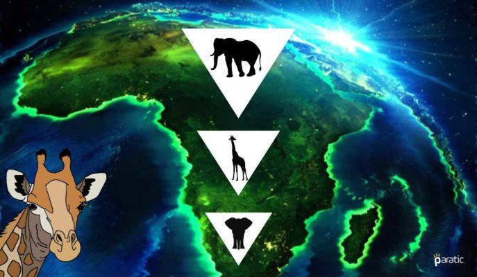 AfDB: Virüs Sürerse Afrika GSYİH'si 2020'de %3,4'e Kadar Düşebilir
