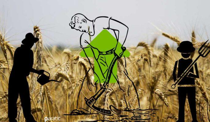 Hindistan'ın Tarım Sektörü İlk Kez GSYİH Daralırken Büyüme Kaydedecek