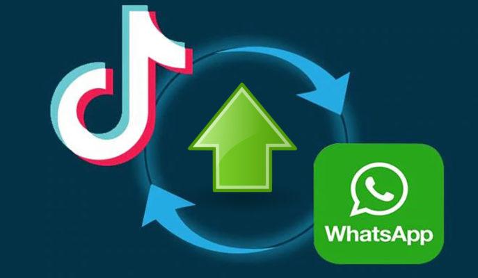 TikTok ve WhatsApp Ekim Ayında En Çok İndirilen Uygulamalar Olmayı Sürdürdü