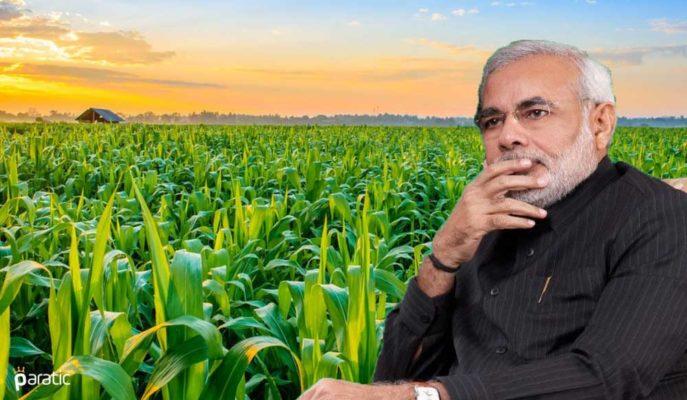 """Hindistan'ın Tarım Sektörü """"Eleştirilen"""" Reformlarla Güçlenecek"""