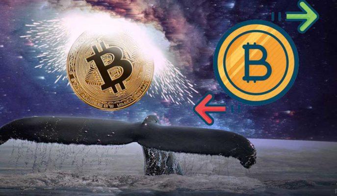 Balinalar Saatte 1 Milyar Dolar Bitcoin'i Bilinmeyen Cüzdanlara Taşıdı