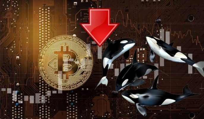 Bitcoin'in 60 Bin Doları Geçmesi Balinaların Satışlarını Artırdı