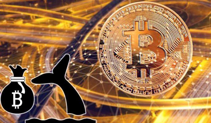 Bitcoin Balinaları Son 24 Saatte 1.5 Milyar Dolara Yakın Transfer Gerçekleştirdi