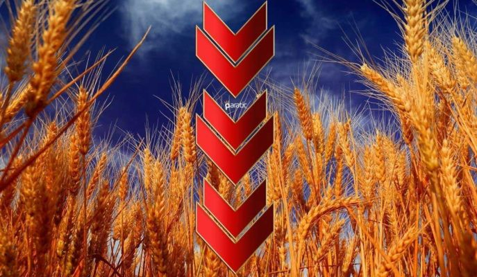 Buğday Emtiası Günün Kaybettireni Olurken, Petrolde Artış Sürüyor