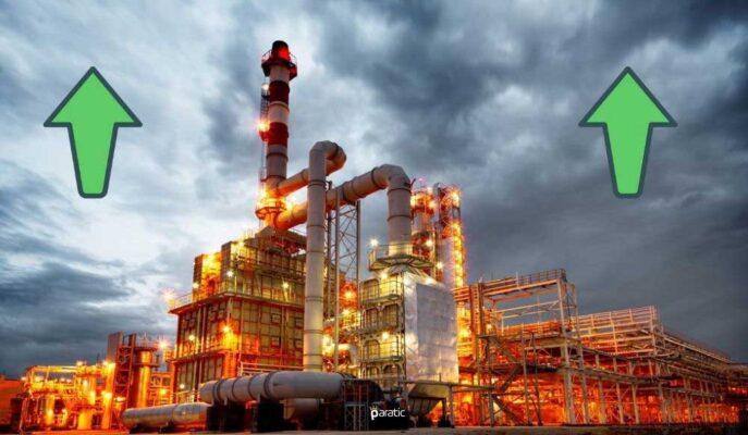 Petrol OECD'nin Büyüme Beklentisi ve Talep İyimserliğiyle Yükseliyor