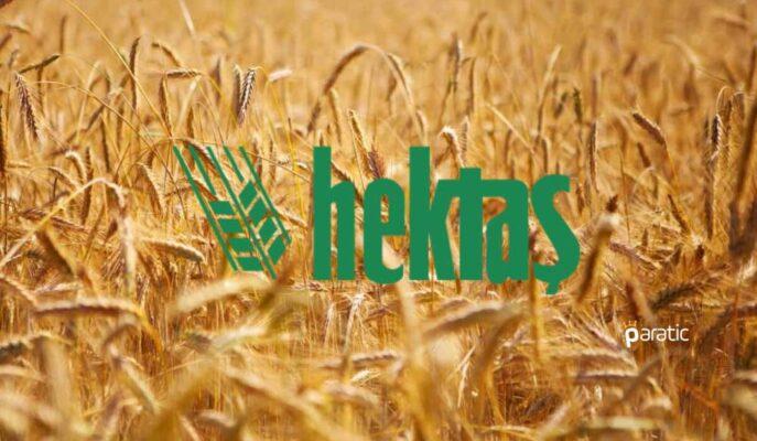 Hektaş, 12 Bin Yıllık Siyez Buğdaylarının Üretimini Yapacak
