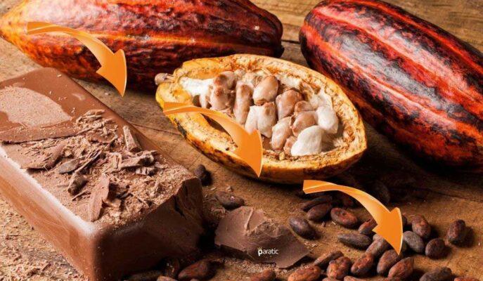 Kakao Hariç Tüm Emtialarda Fiyatlar Yukarı Yönde Seyrediyor