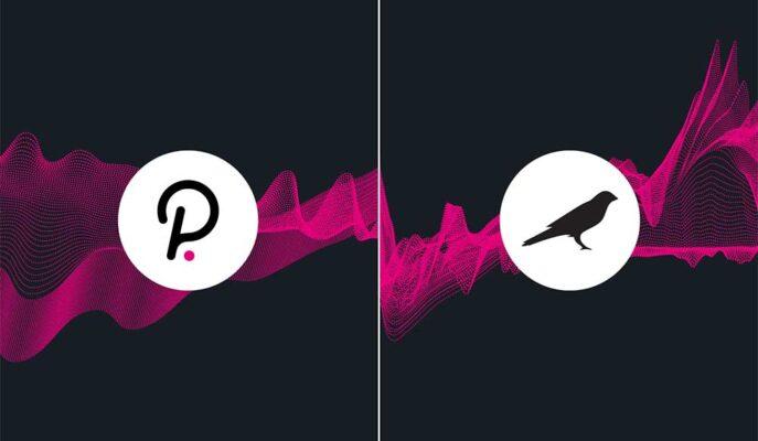 Polkadot ve Kusama, Master Ventures Yatırımı ile Yükseldi