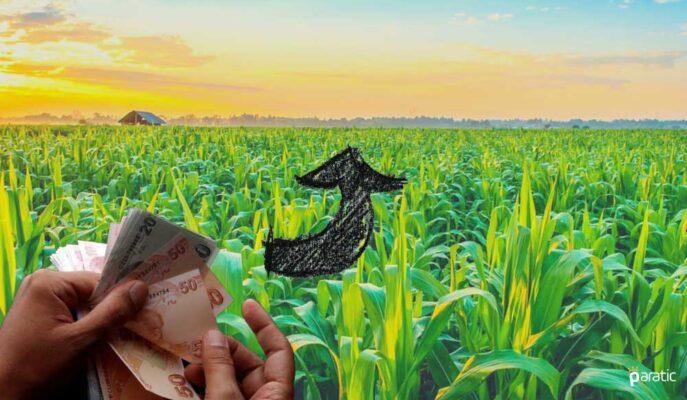 Tarım-ÜFE Mayıs'ta Yıllık Bazda %20,20 Arttı
