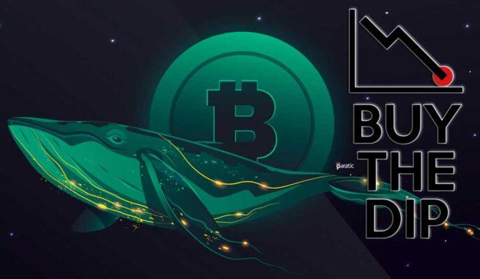 Bitcoin Balinaları Düşüşleri Alım Fırsatı Olarak Değerlendiriyor