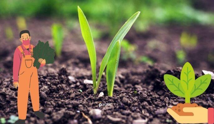Tarımsal Girdi Fiyat Endeksi Haziran'da Yıllık %27,65 Arttı