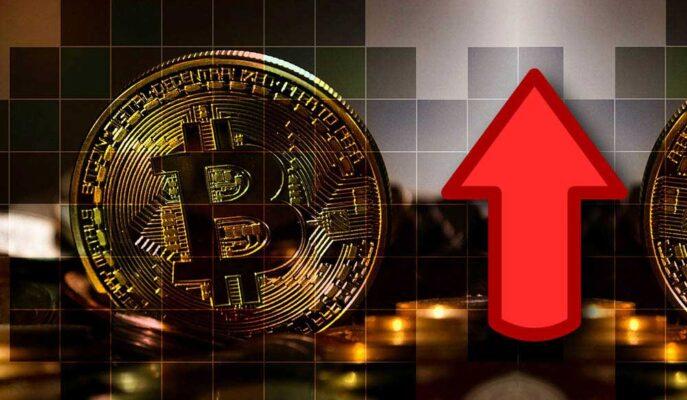 Bitcoin Balinaları Geçen Hafta 40 Bin BTC Biriktirdi