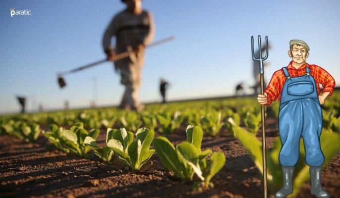 Tarım-ÜFE Ağustos'ta Bir Önceki Aya Göre %1,77 Arttı