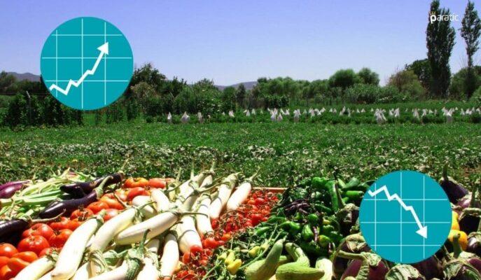 Tarımsal Girdi Fiyat Endeksi Temmuz'da Aylık Bazda %1,98 Arttı