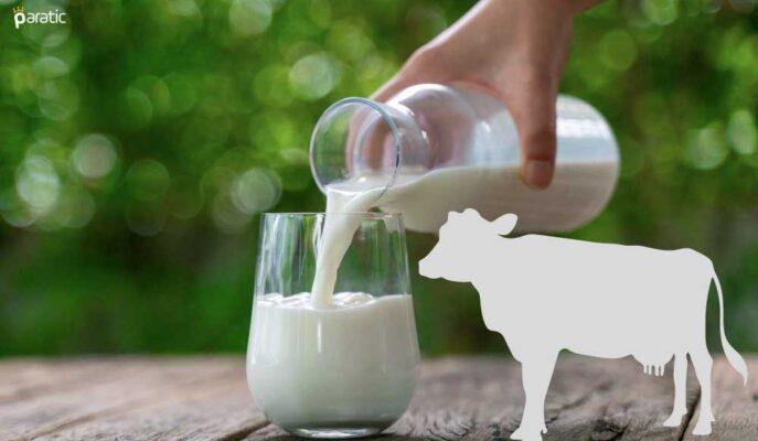 Temmuz'da Türkiye Genelinde Toplanan Süt Miktarı %1,6 Arttı